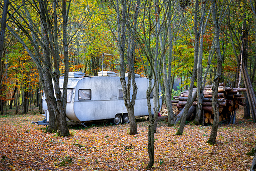 Lost「Old camping trailer in the woods」:スマホ壁紙(12)