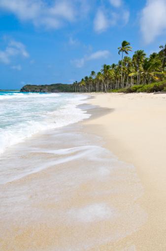 Loneliness「Caribbean Beaches」:スマホ壁紙(13)