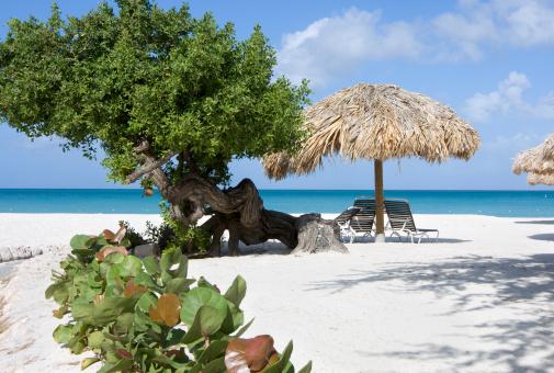 アルーバビーチ「カリブ海のビーチ」:スマホ壁紙(0)
