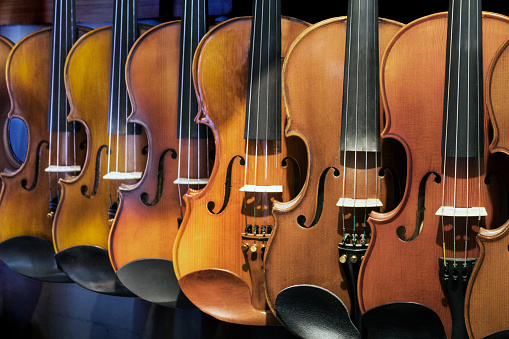 Violin「Violin display, music instrument shop, Tunel」:スマホ壁紙(18)
