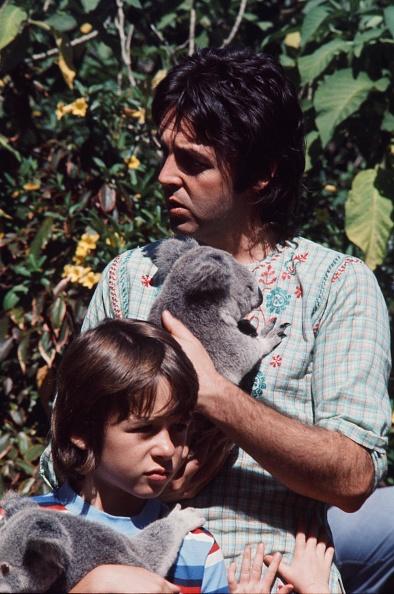 Koala「Paul McCartney With Koala」:写真・画像(18)[壁紙.com]