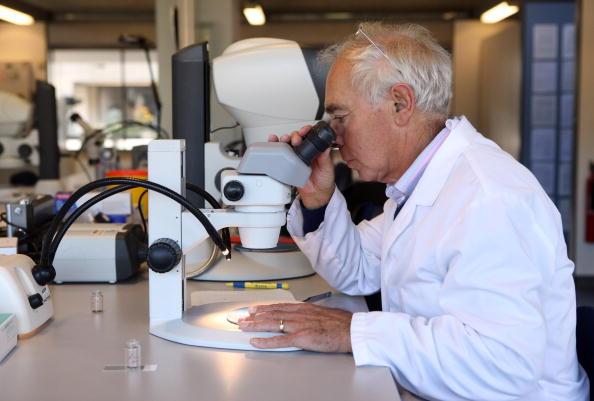 Scientist「Kew Millennium Seed Bank Project Holds 10% Of World's Wild Plant Species」:写真・画像(12)[壁紙.com]