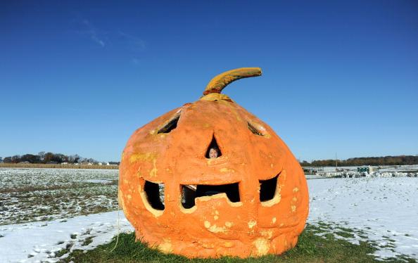 Pumpkin「October Snowstorm Hits The Northeast」:写真・画像(18)[壁紙.com]