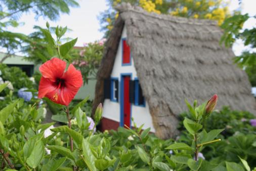 Madeira Island「Typical Madeira house」:スマホ壁紙(19)