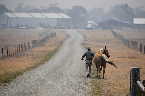 Dust「Fire Crews Work To Bring Tallaganda National Park Bushfire Under Control」:写真・画像(3)[壁紙.com]