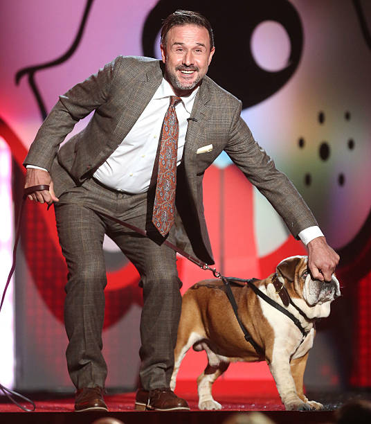 Fox's Cause For Paws: An All-Star Dog Spectacular - Show:ニュース(壁紙.com)