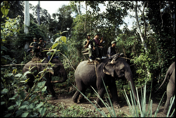 Militant Groups「Khmer Rouge On Elephants」:写真・画像(14)[壁紙.com]