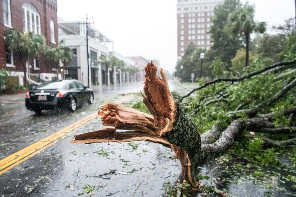 Charleston - South Carolina「Hurricane Dorian Makes Its Way Up East Coast」:写真・画像(11)[壁紙.com]