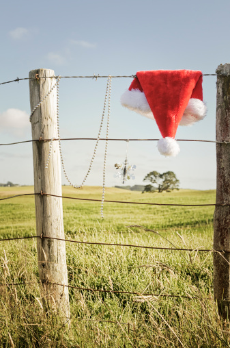 Santa Hat「Rustic Southern Hemisphere Christmas」:スマホ壁紙(8)