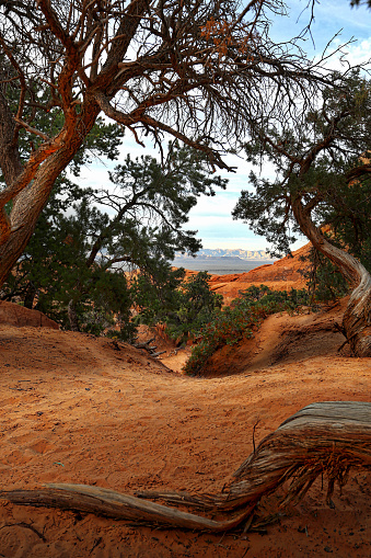 Landscape Arch「Arches National Park Double O Arch Hiking Trail」:スマホ壁紙(2)