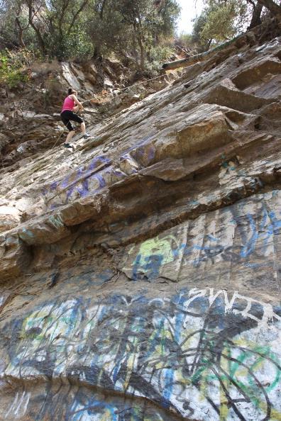 Wilderness Area「Vandals Target Los Angeles Area National Forests」:写真・画像(12)[壁紙.com]