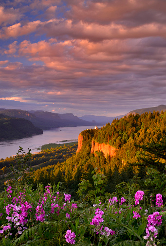 Columbia River Gorge「Vista House & Gorge」:スマホ壁紙(8)