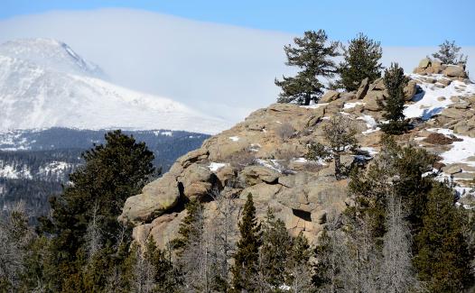Steep「Rocky Mountains in Winter」:スマホ壁紙(11)