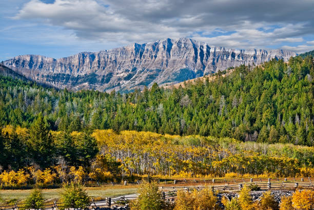 Rocky Mountain Front Range in the Fall:スマホ壁紙(壁紙.com)