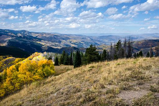 Aspen Tree「Rocky Mountain Panorama」:スマホ壁紙(15)