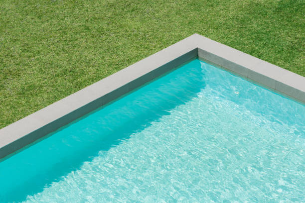 Sunny view of swimming pool in backyard:スマホ壁紙(壁紙.com)