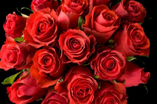 バレンタイン「赤いバラ」:スマホ壁紙(2)
