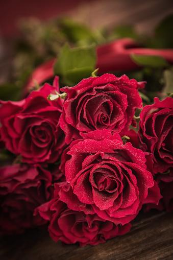 Sensuality「Red Roses」:スマホ壁紙(10)