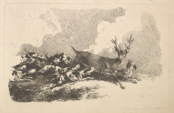 Animal Body Part「Hounds Hunting A Stag」:写真・画像(3)[壁紙.com]