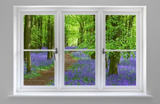 春「ブルーベルの木製の窓枠からホワイト」:スマホ壁紙(11)