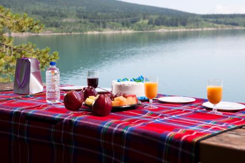 Tartan check「湖でピクニック」:スマホ壁紙(18)