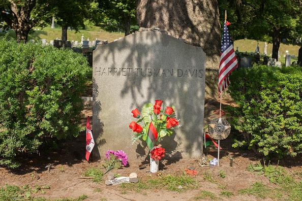 花「Grave Of Harriet Tubman」:写真・画像(8)[壁紙.com]