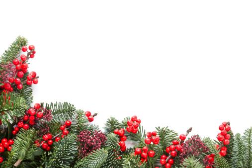 Branch - Plant Part「Christmas Garland」:スマホ壁紙(2)