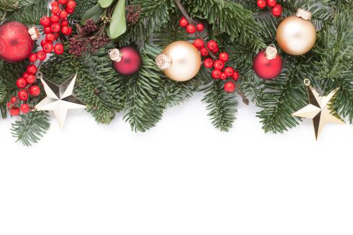 Branch - Plant Part「Christmas Garland」:スマホ壁紙(5)