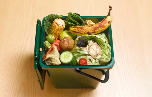 Unhygienic「Food waste recycling compost」:スマホ壁紙(2)