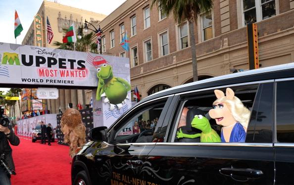 "El Capitan Theatre「Premiere Of Disney's ""Muppets Most Wanted"" - Red Carpet」:写真・画像(15)[壁紙.com]"