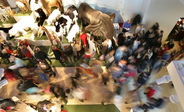 "Crowd「Shoppers Brave The Crowds On ""Black Friday""」:写真・画像(9)[壁紙.com]"