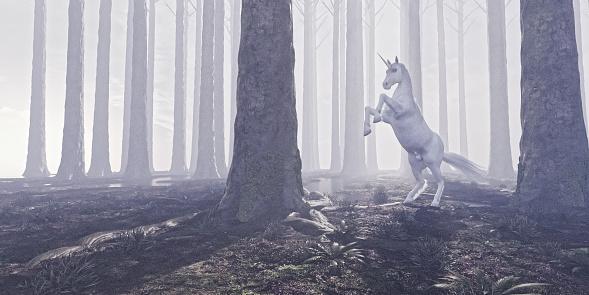 Fairy Tale「Prancing unicorn in mystical forest」:スマホ壁紙(7)