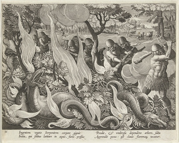 Engraving「Catching Serpents In India Using Clubs And Torches To Light The Undergrowth」:写真・画像(11)[壁紙.com]