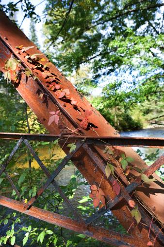 Adirondack Mountains「Bridge support in forest」:スマホ壁紙(9)