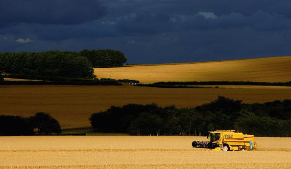 Harvesting「Agriculture Dominates Debate Over EU Funding」:写真・画像(7)[壁紙.com]