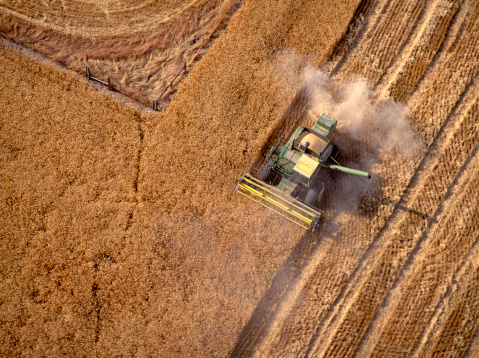 Harvesting「Combine harvesting wheat field, aerial view」:スマホ壁紙(7)