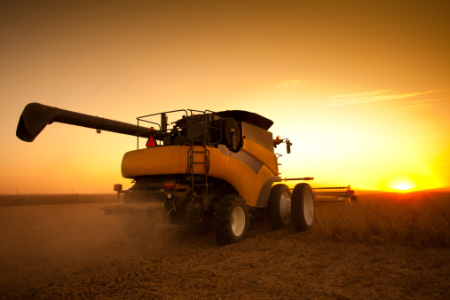 newoutdoors「Combine Harvesting Soybeans at Dusk」:スマホ壁紙(7)