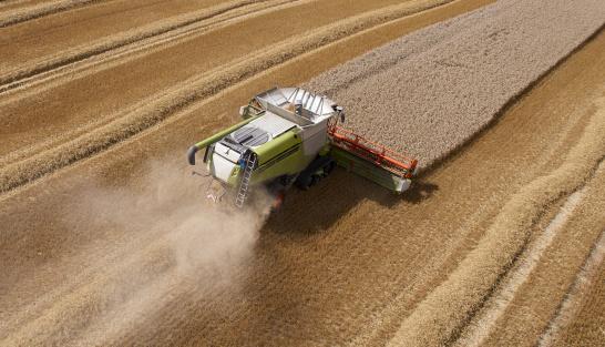 Combine Harvester「Combine Harvesting Crop in Neat Lines」:スマホ壁紙(13)