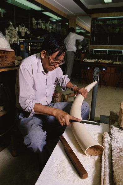 Tom Stoddart Archive「Ivory Carving」:写真・画像(6)[壁紙.com]
