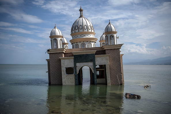 The Natural World「Deadly Earthquake and Tsunami Hits Indonesia's Island of Sulawesi」:写真・画像(8)[壁紙.com]