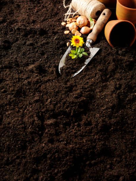 Garden Soil and Gadening Plant Pots:スマホ壁紙(壁紙.com)