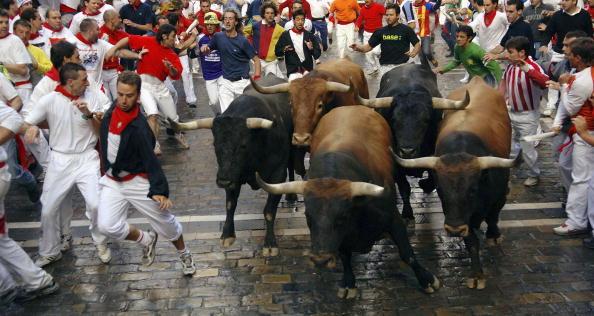 Horned「San Fermin Fiesta In Pamplona」:写真・画像(16)[壁紙.com]