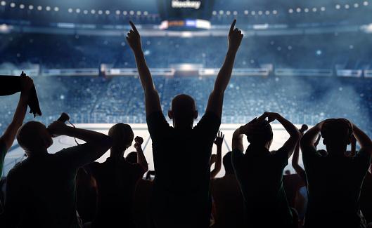 Fist「Hockey fans at stadium」:スマホ壁紙(15)