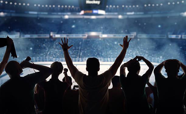 Hockey fans at stadium:スマホ壁紙(壁紙.com)