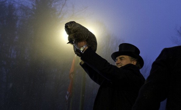 Shadow「Punxsutawney Phil Makes Annual Forecast On Groundhog Day」:写真・画像(18)[壁紙.com]