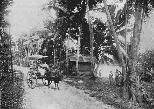 Crockery「'Road Beside the Kelaniya River', c1890,」:写真・画像(13)[壁紙.com]