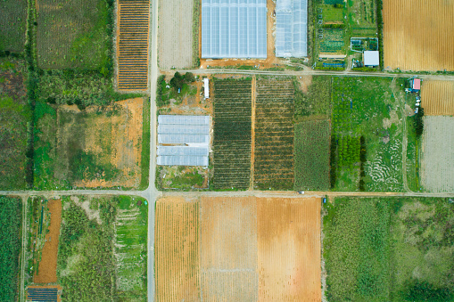 Unmanned Aerial Vehicle「Aerial photograph of the land where fields etc. are lined up.」:スマホ壁紙(3)