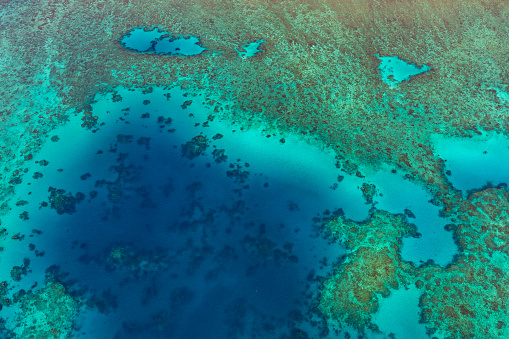 The Nature Conservancy「Aerial photography of the Great Barrier Reef」:スマホ壁紙(0)