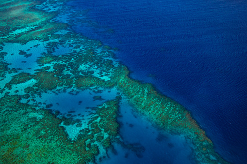 The Nature Conservancy「Aerial photography of the Great Barrier Reef」:スマホ壁紙(4)