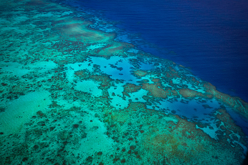 The Nature Conservancy「Aerial photography of the Great Barrier Reef」:スマホ壁紙(8)